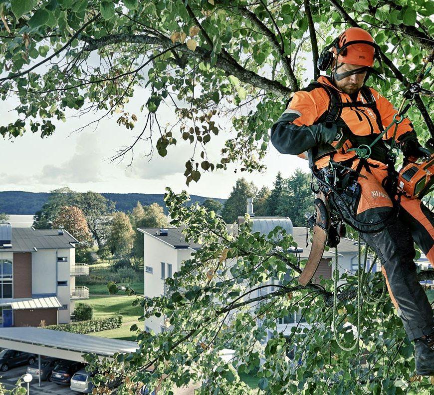 Coupon Code – Get an EXTRA 5% off all TREE CLIMBING & ARBORIST EQUIPMENT!