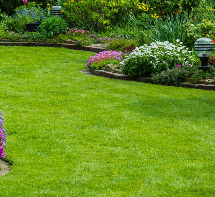 The Top Six Reasons to Mulch Your Lawn