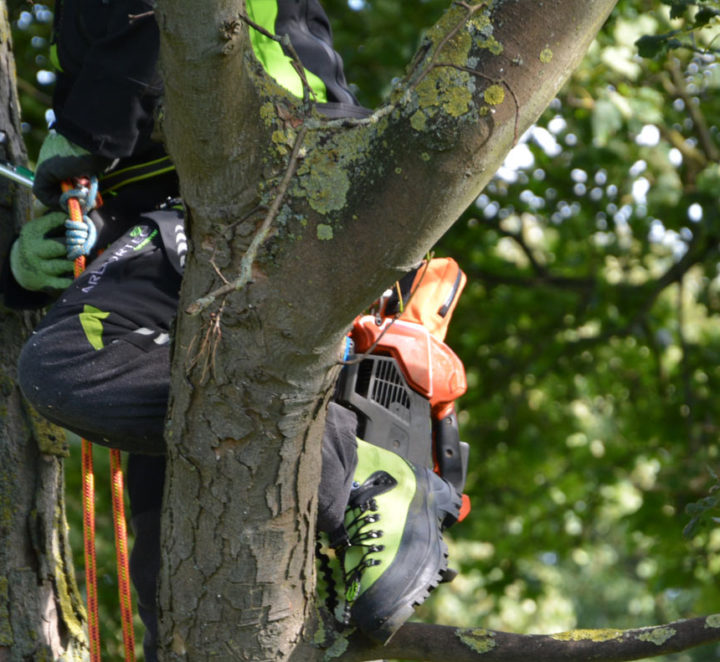 NEW ARBORTEC BOOTS, GLOVES & TROUSERS