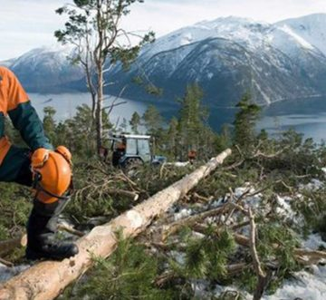 STIHL INTEGRATES VIKING AND CREATES ONE BRAND FROM 2019